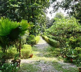 Corbett Jungle Lore Resort
