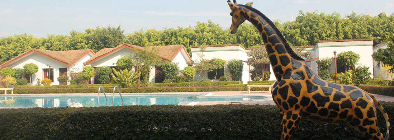 Corbett Holiday Forest Resort, Jim Corbett National Park, Corbett Tiger Reserve
