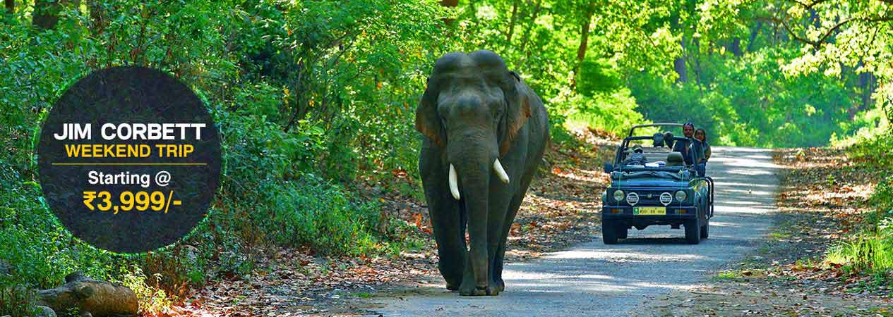 Corbett Weekend Tour, Jim Corbett National Park, Corbett Tiger Reserve
