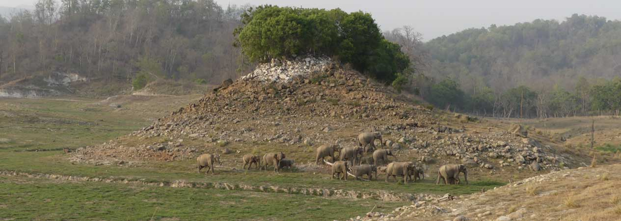 Landscapes and Geology, Jim Corbett National Park, Corbett Tiger Reserve