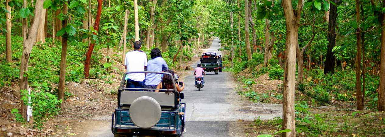 Corbett Jeep Safari Online Booking, Jim Corbett National Park, Corbett Tiger Reserve