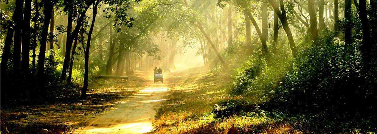Tradition in Corbett, Jim Corbett National Park, Corbett Tiger Reserve